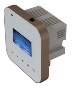 Amplificatore 30W GLEMM