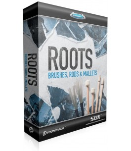 SDX Roots: Brushes, Rods...