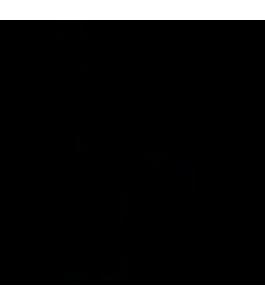 T - Adapter Nero GENELEC